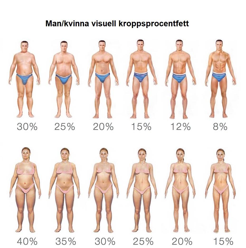 Kroppsfett procent jämför